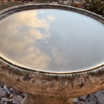 Clouds in a birdbath