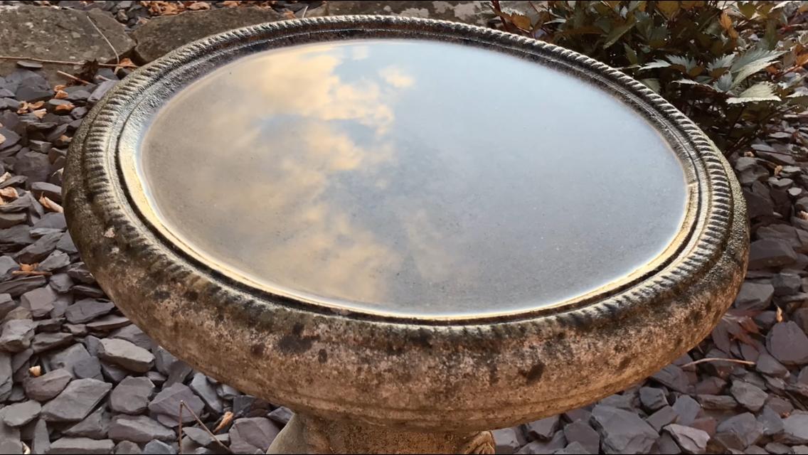 Clouds in a birdbath
